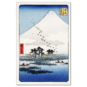 Besneeuwde Berg Fuji